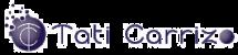 logo web low